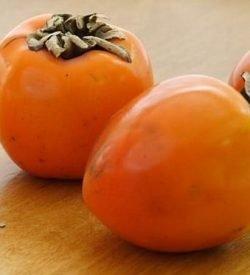 Frutti di kaki mela
