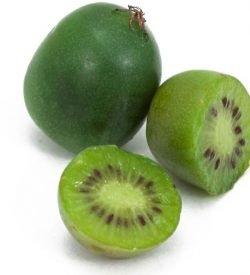 L'Issai è una varietà AUTOFERTILE. Frutto medio (60g), buccia sottile verderossiccia, liscia e glabra.